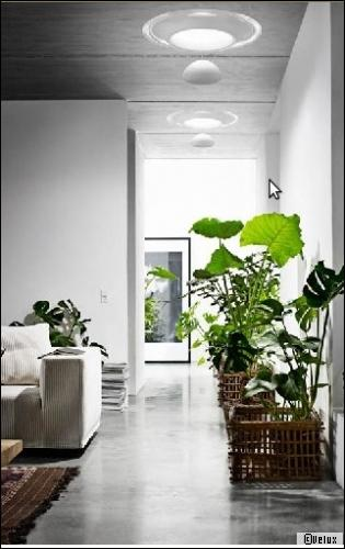 Plante pour salle de bain sans fenetre maison design for Quel eclairage pour salle de bain sans fenetre