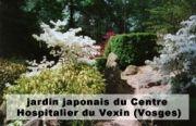 Un jardin japonais à la portée de tous