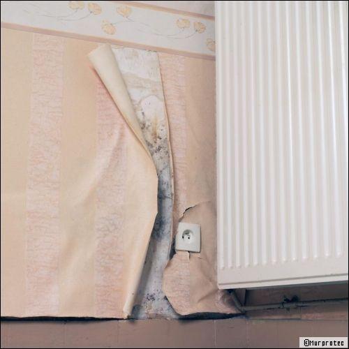 humidit dans la maison la reconna tre et la traiter. Black Bedroom Furniture Sets. Home Design Ideas