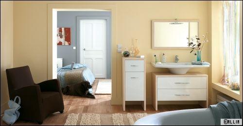 Une salle de bains dans la chambre for Mini salle d eau dans une chambre
