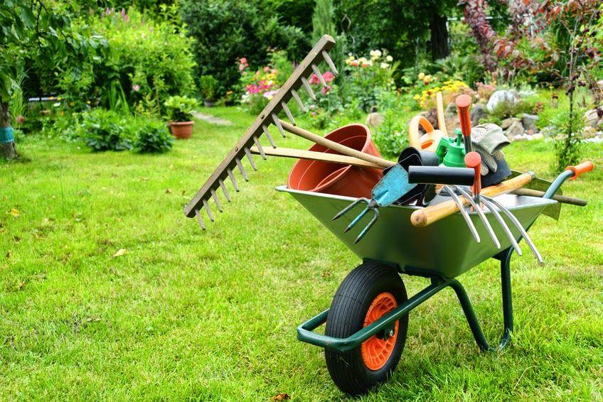 Petit travaux d 39 entretien et r duction d 39 imp t for Petit travaux de jardinage