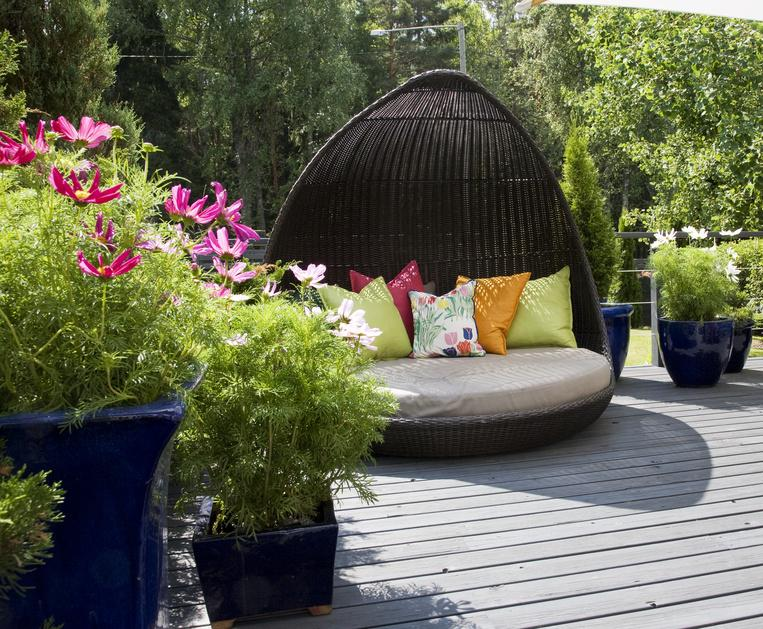 5 conseils pour r ussir l 39 lagage de ses arbres. Black Bedroom Furniture Sets. Home Design Ideas