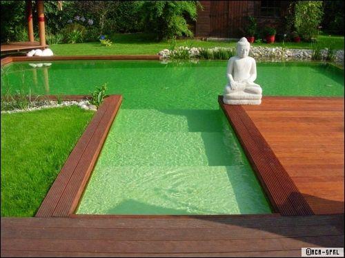 Piscine naturelle une piscine colo z ro entretien for Combloux piscine