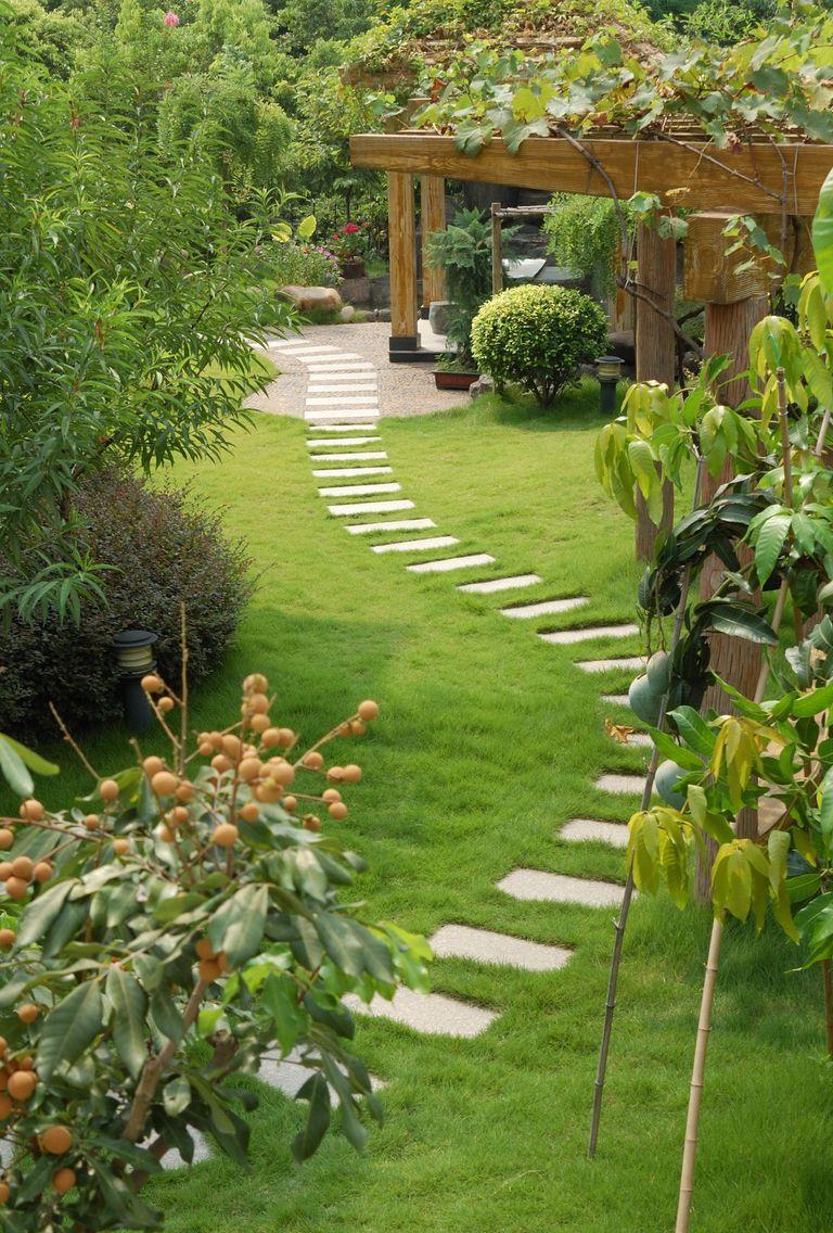 Exemple De Devis Amenagement De Jardin